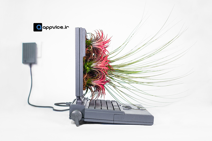 plant-your-mac-006